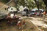 Picture of a family picnicking next to their RV